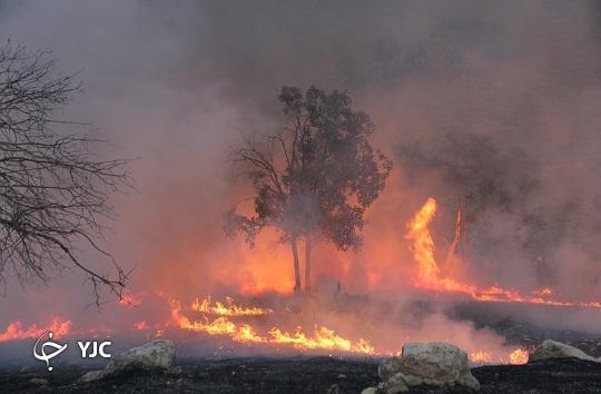 ضجه های زاگرس و امدادگران بی حفاظ طبیعت، جان هایی که می سوزند تا طبیعت نسوزد